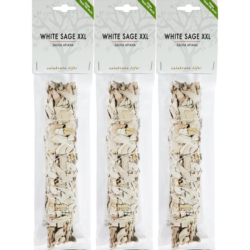 3x Zuiverende witte salie bladeren/blaadjes stick/stokje